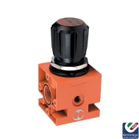 Metal Work Pressure Regulator
