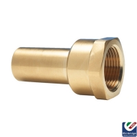 Female Brass Stem Adapter