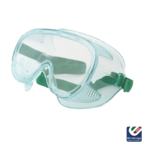 Standard Clear Goggles