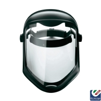 Pulsafe Face Shield